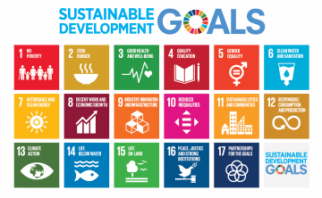 Achieving SDGs in the wake of COVID-19: Globally and Nationally